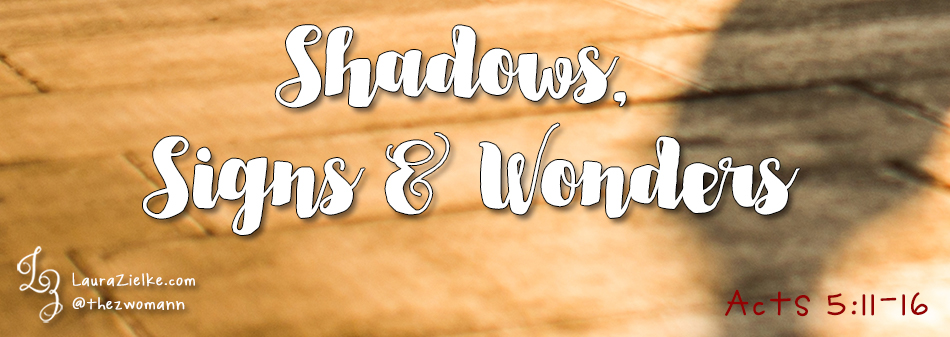 Shadows, Signs & Wonders