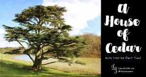 Acts 7:45-50 ~ A House of Cedar (part two)